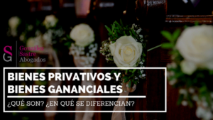 bienes privativos y bienes gananciales